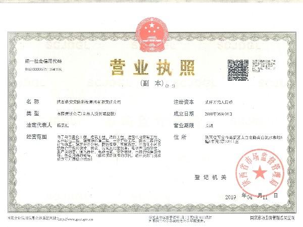 陕西鑫安安防营业执照