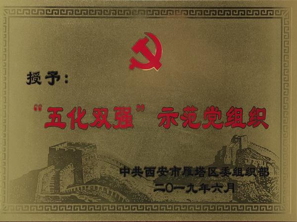 五化双强示范党组织