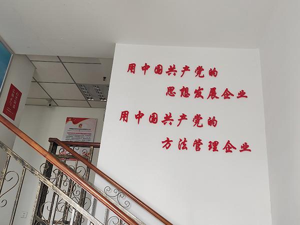 党建兴企(六)